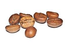 Graines de café frites sur un fond blanc Macro Photos libres de droits