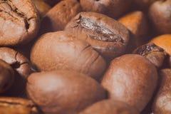 Graines de café très en gros plan, macro photographie Images libres de droits