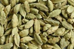 Graines de Cardamon photo libre de droits