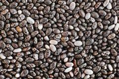 Graines de Chia dans la fin de haute  Photographie stock libre de droits