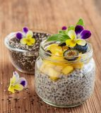 Graines de Chia et pudding de yaourt Photo libre de droits