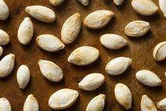 Graines de citrouille salées rôties Image libre de droits
