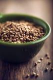 Graines de coriandre Photographie stock