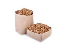 Graines de coriandre sèches dans le sac de papier et la boîte sur le fond blanc Images stock