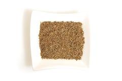 Graines de cumin dans la cuvette blanche carrée Images stock