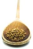 Graines de cumin dans une cuillère Photo stock
