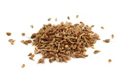 graines de fenouil Photo stock
