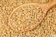 Graines de fenugrec dans la cuillère en bois Photo stock