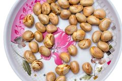 Graines de fruit de Jack dans un plat d'isolement sur le fond blanc photos stock