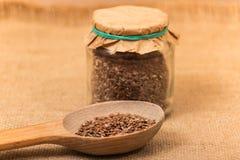 Graines de lin Image stock