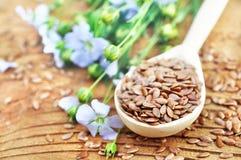 Graines de lin dans la cuillère avec des lins oléagineux et des plantes de linum photographie stock libre de droits