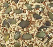 Graines de lin textile, de potiron, de sésame et de tournesol saines Image libre de droits
