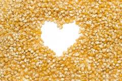 Graines de maïs éclaté Image libre de droits