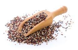 Graines de quinoa image libre de droits