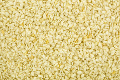 Graines de sésame photo stock
