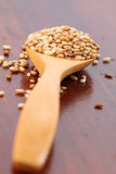 Graines de sésame rôties Photographie stock