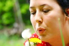 Graines de soufflement de pissenlit de femme photos stock