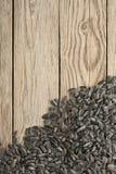 Graines de tournesol noires Image stock