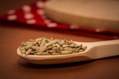 Graines de tournesol sur une cuillère en bois sur la table photographie stock libre de droits