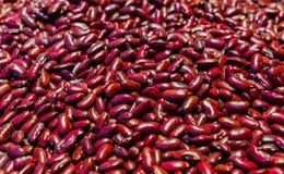 Graines des haricots rouges Nourriture de protéine Un régime sain photo stock