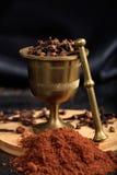 Graines et poudre d'épice de clou de girofle Image libre de droits