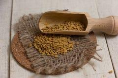 Graines indiennes de Schinduf Photo libre de droits