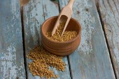 Graines indiennes de Schinduf Images stock