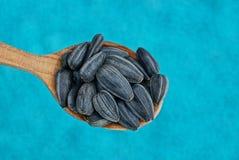 Graines noires dans une cuillère en bois sur un fond bleu Image libre de droits
