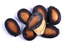 Graines noires de pastèque photographie stock