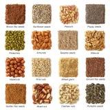 Graines oléagineuses et noix Image stock