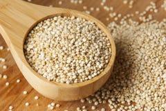 Graines organiques crues de quinoa photographie stock libre de droits