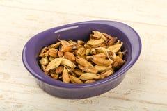 Graines sèches de cardamome Photos stock