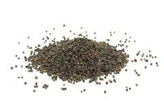 Graines sèches de graine de colza photographie stock libre de droits