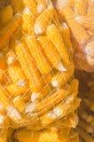 Graines sèches de maïs dans le sac de sac image stock