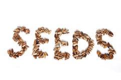 Graines Stripy Image stock