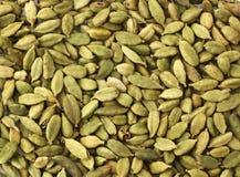 Graines vertes de cardamome Image libre de droits