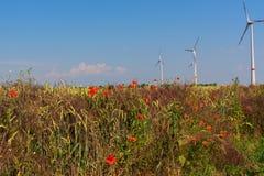 Grainfield met turbine Royalty-vrije Stock Afbeeldingen