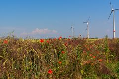 Grainfield with turbine royalty free stock images