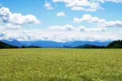 Grainfield z niebem i górami Fotografia Royalty Free