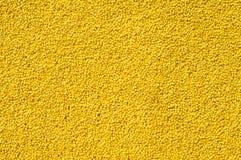 grains photos stock