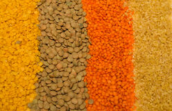 Grains Stock Photography