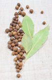 Grains of allspice and bay leaf on a canvas. Grains of allspice and bay leaf on canvas background royalty free stock images