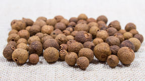 Grains of allspice on a canvas. Grains of allspice on canvas background closeup royalty free stock photography