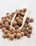 Grains of allspice on a canvas. Grains of allspice on wooden spoon on canvas background stock images