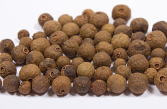 Grains of allspice isolated on white. Background stock image