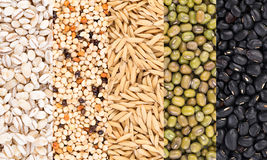 Grains background. food background Royalty Free Stock Image