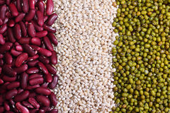 Grains and beans Royalty Free Stock Images