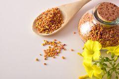 Grains of bee pollen in jar and wooden spoon top Royalty Free Stock Images