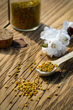 Grains of bee pollen in jar and wooden spoon on wooden table with flowers of spring trees. Apitherapy. Bee products. Royalty Free Stock Photo