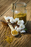Grains of bee pollen in jar and wooden spoon on wooden table with flowers of spring trees. Apitherapy. Bee products. Stock Image